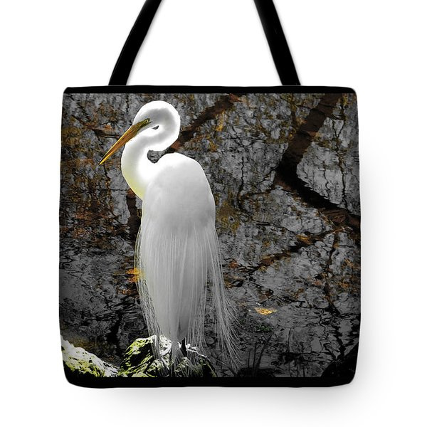Cloaked Tote Bag by Judy Wanamaker