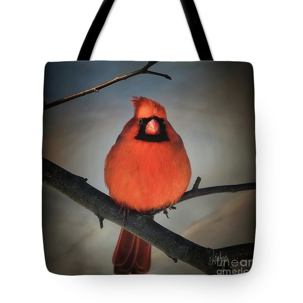 Close Encounter On A Blustery Day Tote Bag by Lois Bryan