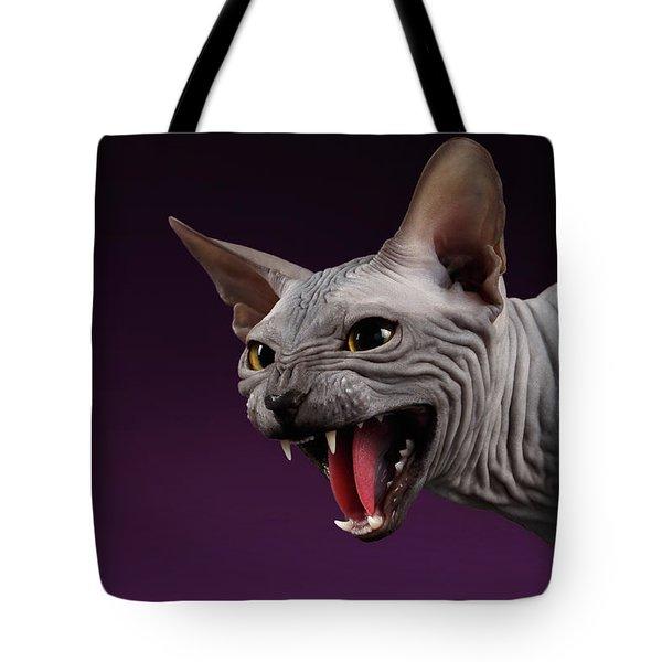 Close-up Aggressive Sphynx Cat Hisses On Purple Tote Bag