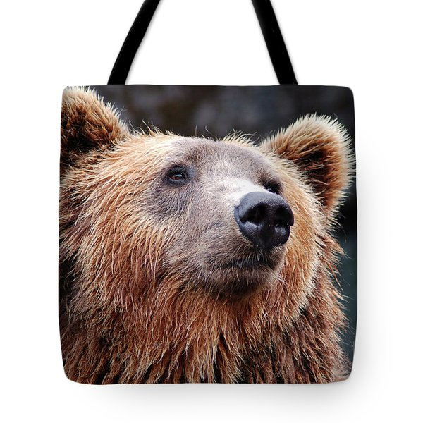 Tote Bag featuring the photograph Close Up Bear by MGL Meiklejohn Graphics Licensing