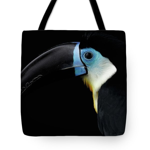 Close-up Channel-billed Toucan, Ramphastos Vitellinus, Isolated On Black Tote Bag