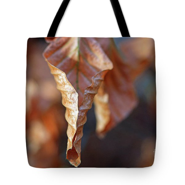 Close-up Of Autumn Leaf Tote Bag