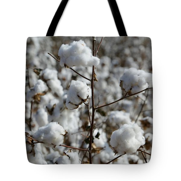 Close-up Of Cotton Plants In A Field Tote Bag