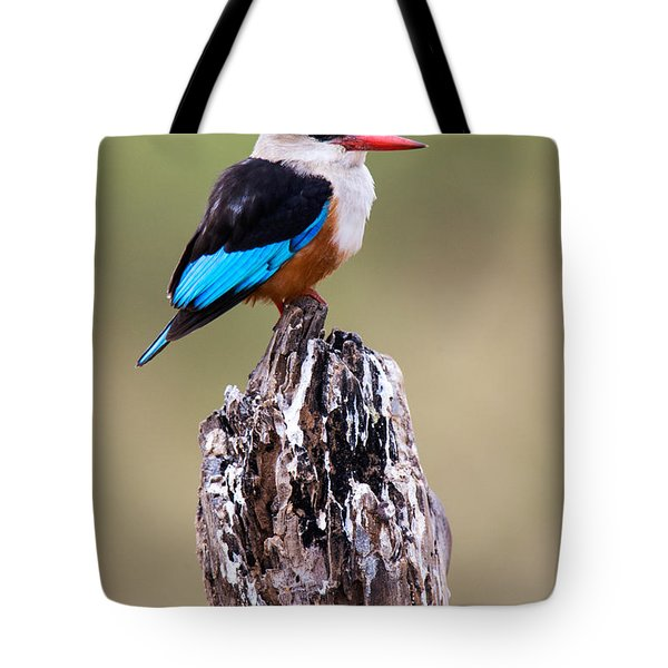 Close-up Of Grey-headed Kingfisher Tote Bag