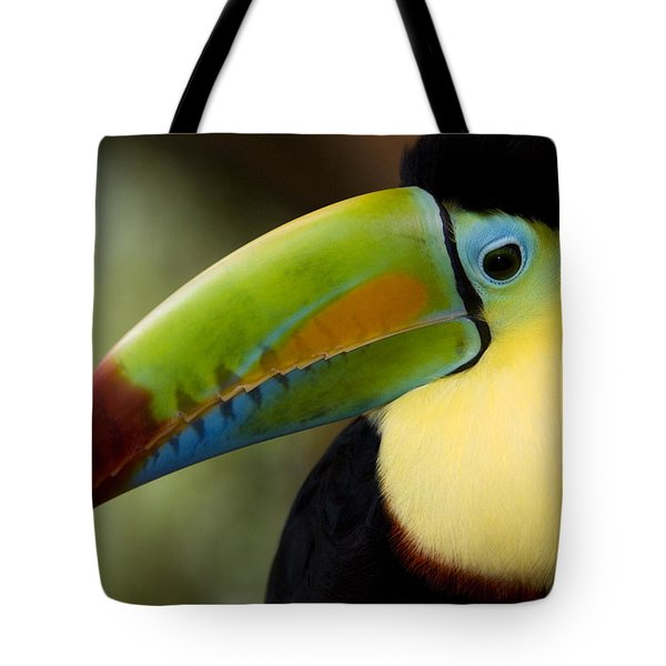 Close-up Of Keel-billed Toucan Tote Bag