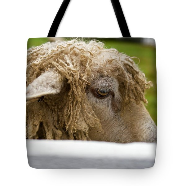 Close-up Of Leicester Longwool Tote Bag
