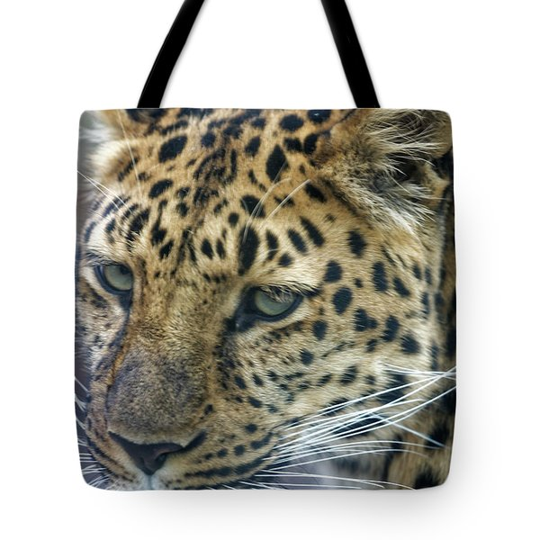 Close Up Of Leopard Tote Bag