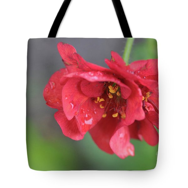 Close-up Of Red Flower Tote Bag