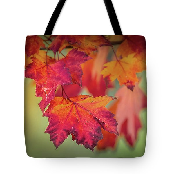 Close-up Of Red Maple Leaves In Autumn Tote Bag