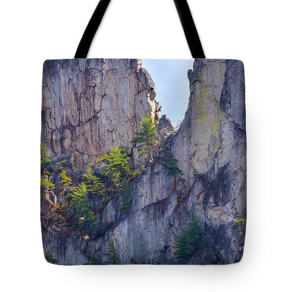 Close-up Of Seneca Rocks Top Edge Tote Bag