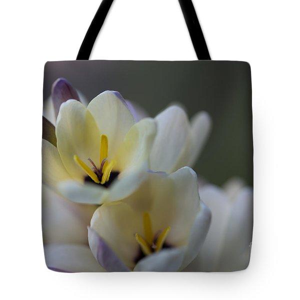 Close-up Of White Freesia Tote Bag