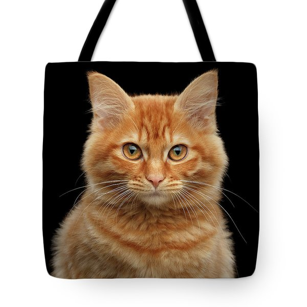 Close-up Portrait Of Ginger Kitty On Black Tote Bag