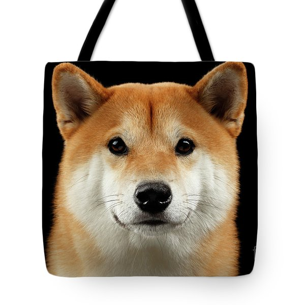 Close-up Portrait Of Head Shiba Inu Dog, Isolated Black Background Tote Bag by Sergey Taran