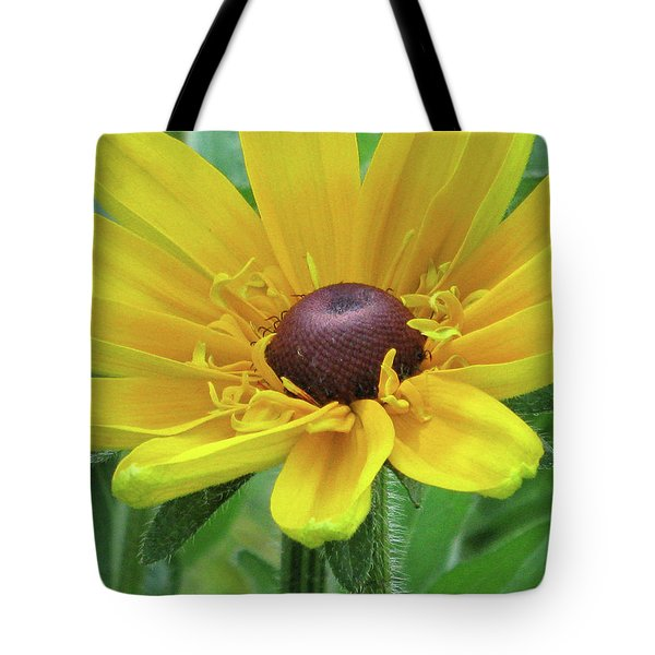 Close Up Summer Daisy Tote Bag by Michele Wilson