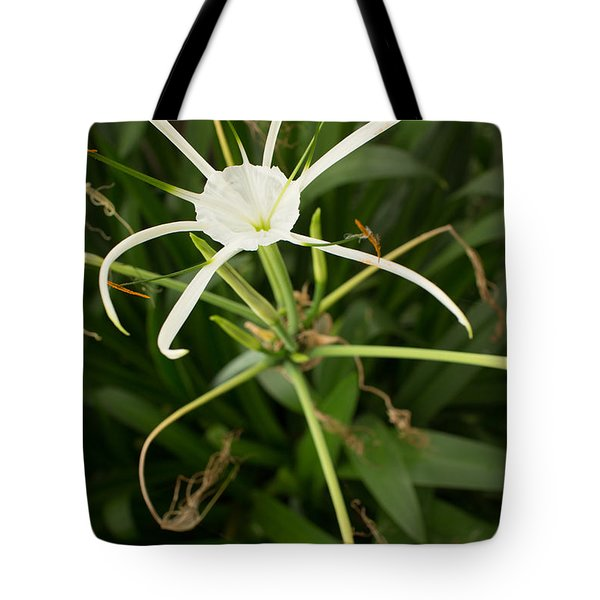 Close Up White Asian Flower With Leafy Background, Vertical View Tote Bag