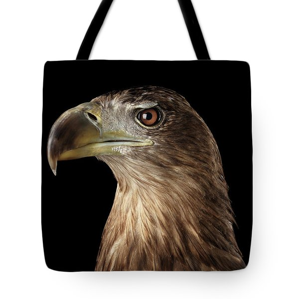 Close-up White-tailed Eagle, Birds Of Prey Isolated On Black Background Tote Bag