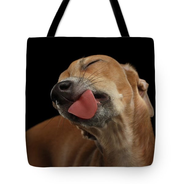 Closeup Cute Italian Greyhound Dog Licked With Pleasure Isolated Black Tote Bag by Sergey Taran