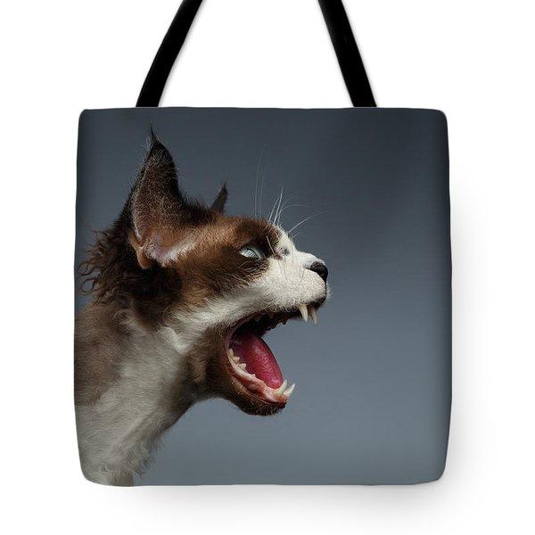 Closeup Devon Rex Hisses In Profile View On Gray  Tote Bag