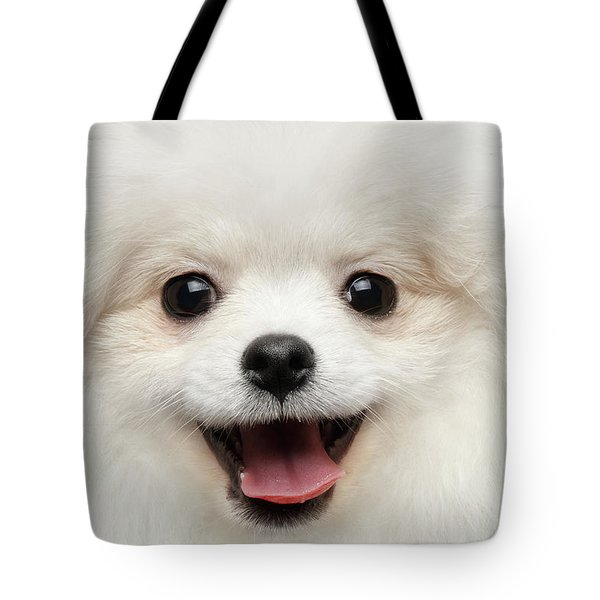 Closeup Furry Happiness White Pomeranian Spitz Dog Curious Smiling Tote Bag by Sergey Taran