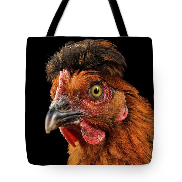 Closeup Ginger Chicken Isolated On Black Background In Profile View Tote Bag