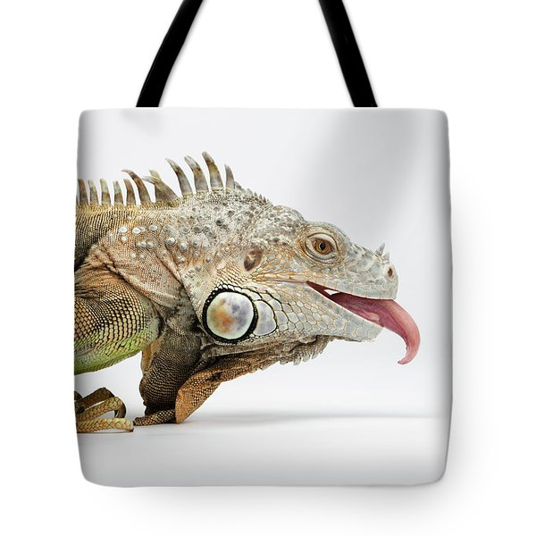 Closeup Green Iguana Showing Tongue On White Tote Bag