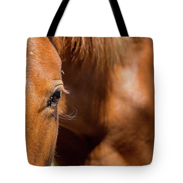 Closeup Horse Eye With Copy Space Tote Bag