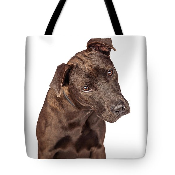 Closeup Of Labrador Crossbreed Dog Tilting Head Tote Bag