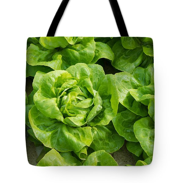 Tote Bag featuring the photograph Closeup Of Lettuces by Hans Engbers