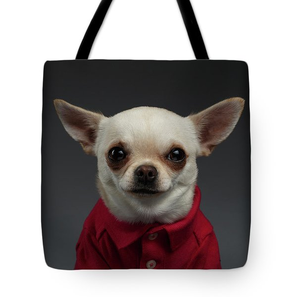 Closeup Portrait Chihuahua Dog In Stylish Clothes. Gray Background Tote Bag