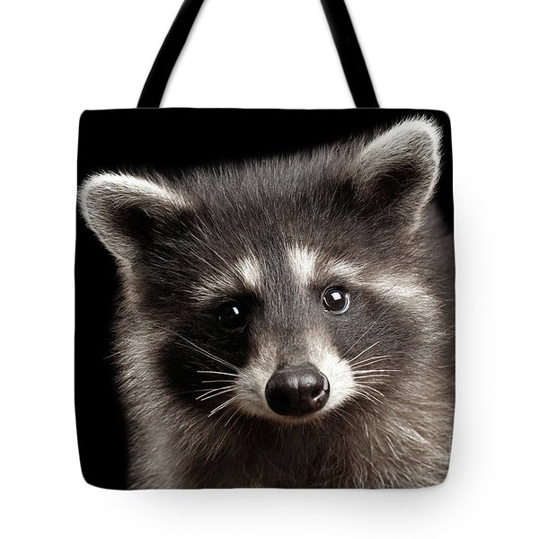 Closeup Portrait Cute Baby Raccoon Isolated On Black Background Tote Bag