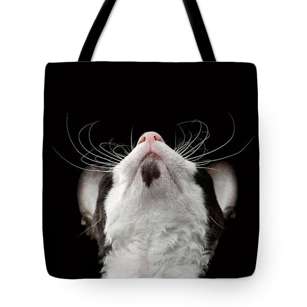 Closeup Portrait Of Cornish Rex Looking Up Isolated On Black  Tote Bag