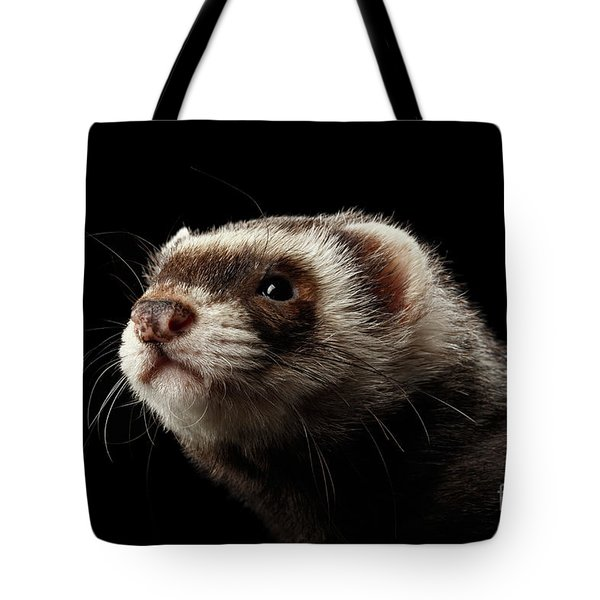Closeup Portrait Of Funny Ferret Looking At The Camera Isolated On Black Background, Front View Tote Bag