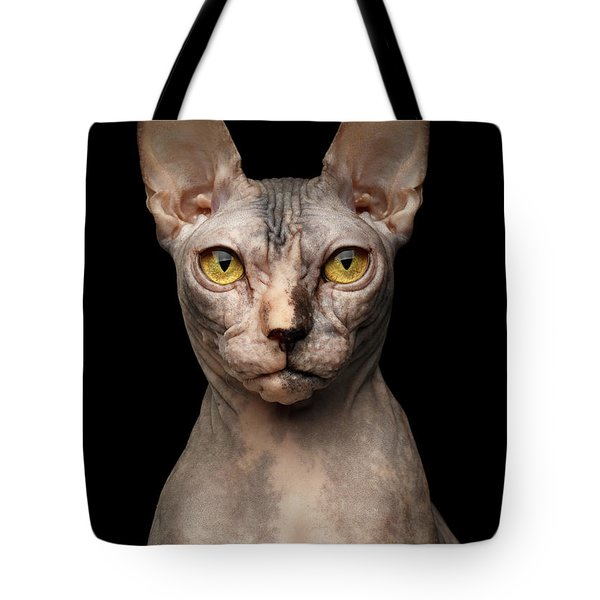 Closeup Portrait Of Grumpy Sphynx Cat, Front View, Black Isolate Tote Bag
