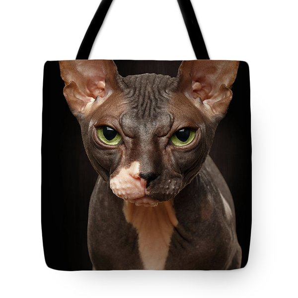 Closeup Portrait Of Grumpy Sphynx Cat Front View On Black  Tote Bag