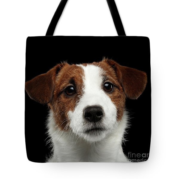 Closeup Portrait Of Jack Russell Terrier Dog On Black Tote Bag by Sergey Taran