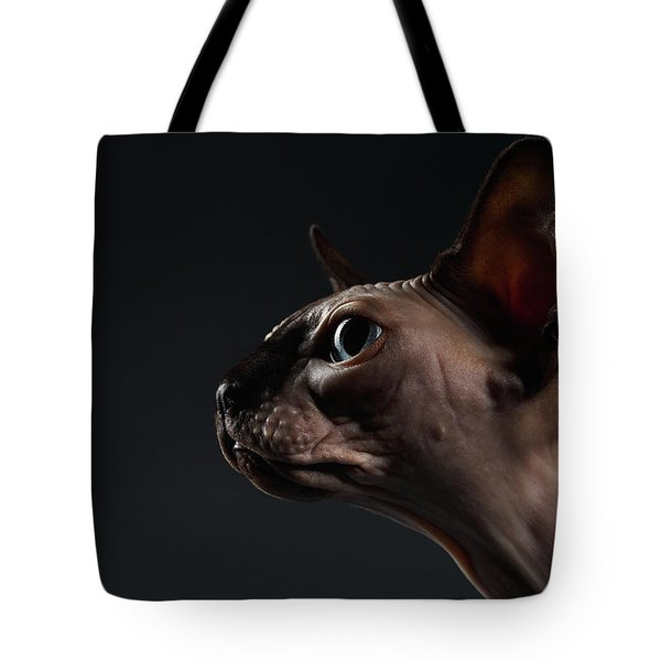 Closeup Portrait Of Sphynx Cat In Profile View On Black  Tote Bag