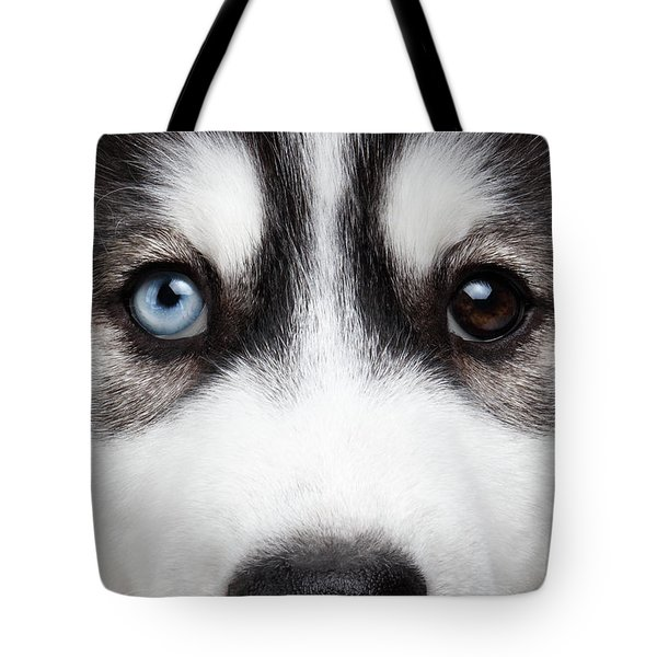 Closeup Siberian Husky Puppy Different Eyes Tote Bag by Sergey Taran