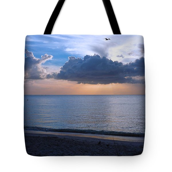 Cloud Creatures At Delnor Wiggins Pass State Park Tote Bag
