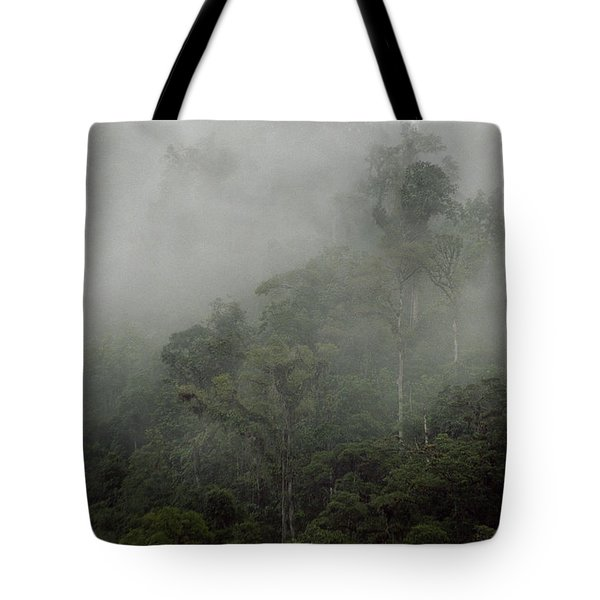 Cloud Forest Tote Bag by Kathy McClure