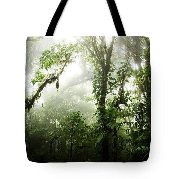 Cloud Forest Tote Bag by Nicklas Gustafsson