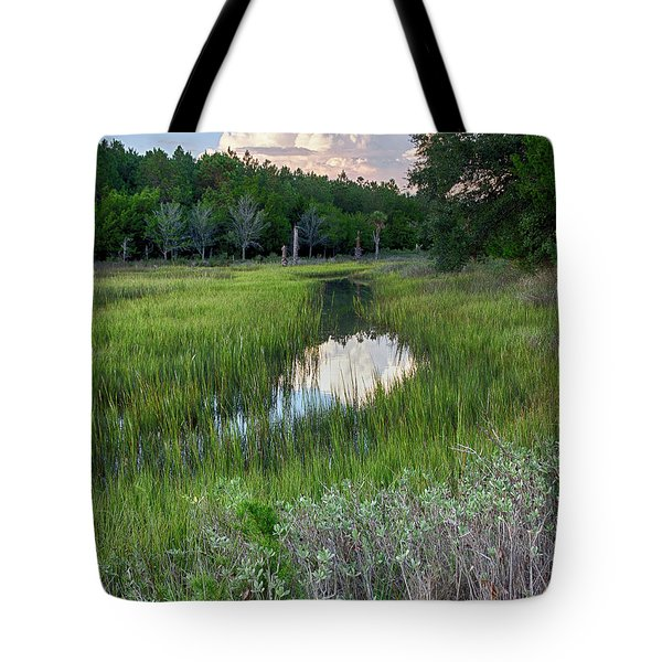 Tote Bag featuring the photograph Cloud Over Marsh by Patricia Schaefer