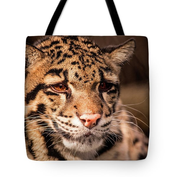 Clouded Leopard II Tote Bag