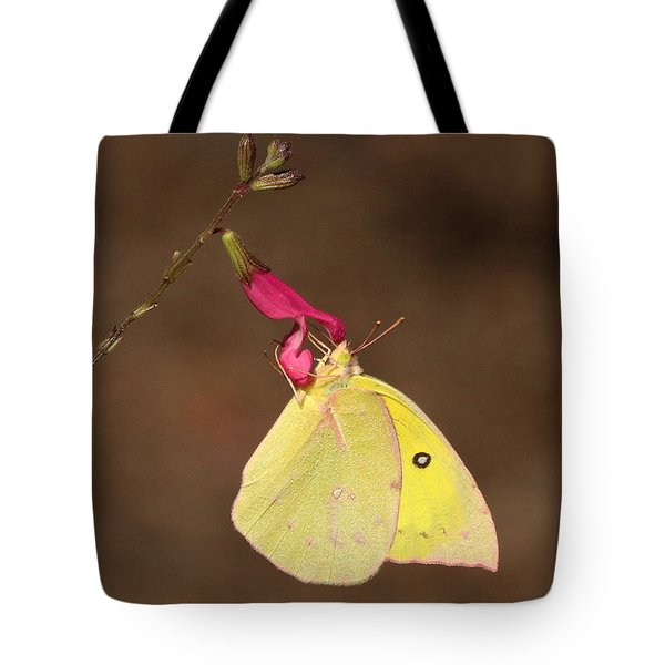 Clouded Sulphur Butterfly On Pink Wildflower Tote Bag by Sheila Brown
