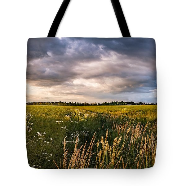 Tote Bag featuring the photograph Clouds Over The Fields by Dmytro Korol