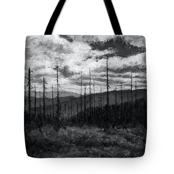 Cloudscape 3 Tote Bag