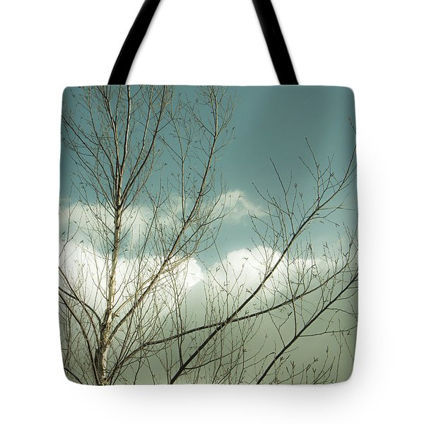 Tote Bag featuring the photograph Cloudy Blue Sky Through Tree Top No 1 by Ben and Raisa Gertsberg