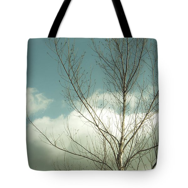 Tote Bag featuring the photograph Cloudy Blue Sky Through Tree Top No 2 by Ben and Raisa Gertsberg