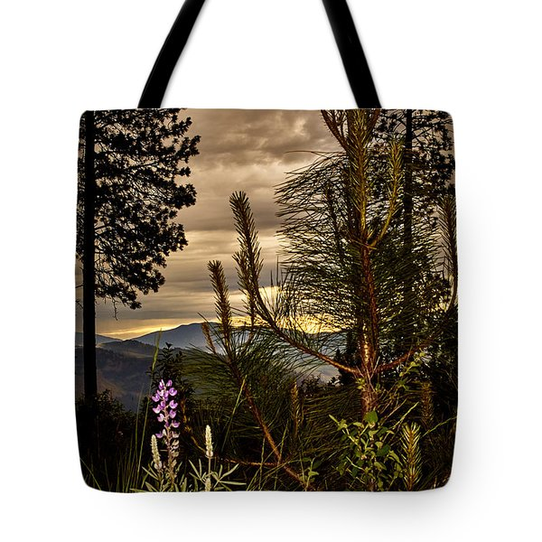 Cloudy Day Tote Bag by Loni Collins