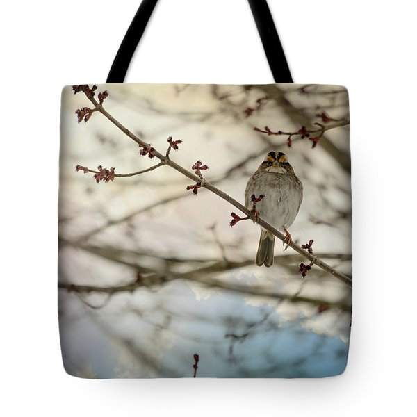 Tote Bag featuring the photograph Cloudy Finch by Trish Tritz