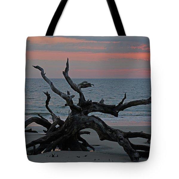 Cloudy Sunrise On Jekyll Island's Driftwood Beach Tote Bag by Bruce Gourley